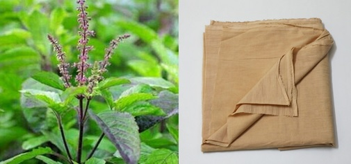 Tulsi leaves and dyed fabric