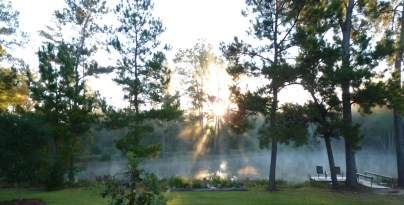 Sunrise, November 10, 8 am.