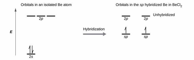 mercury energy level diagram 2001 ford taurus radiator hose sp hybridization introduction to chemistry