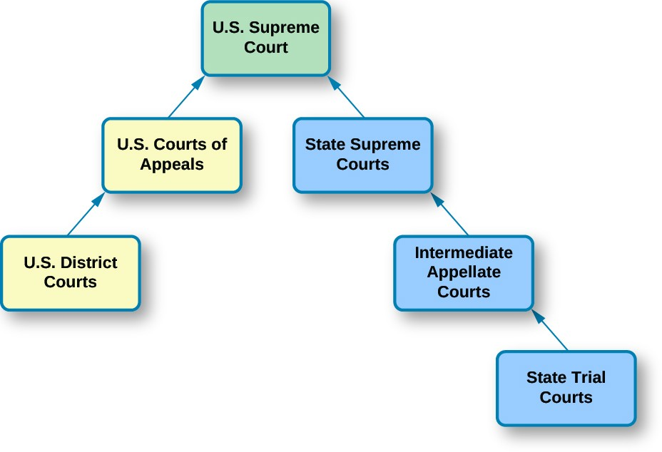 judicial branch court system diagram small boat electrical wiring the dual american government