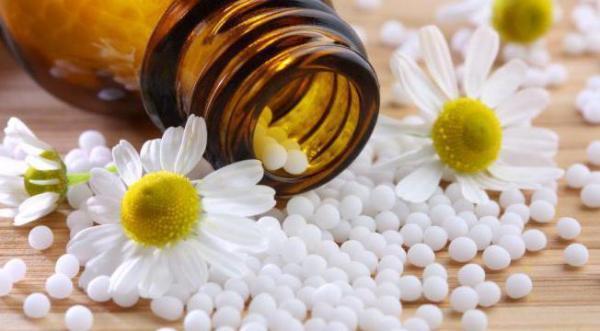 Ромашка обыкновенная: описание и лечебные свойства