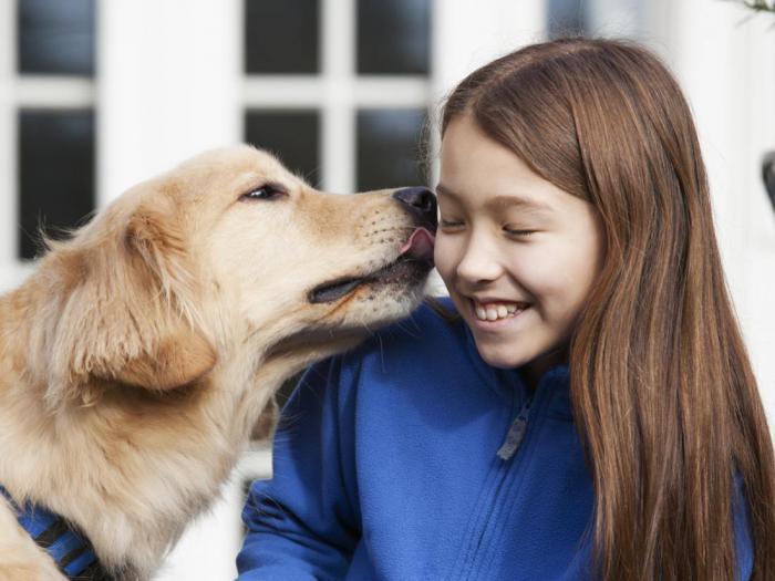Что на самом деле происходит, когда собака облизывает ваше лицо?