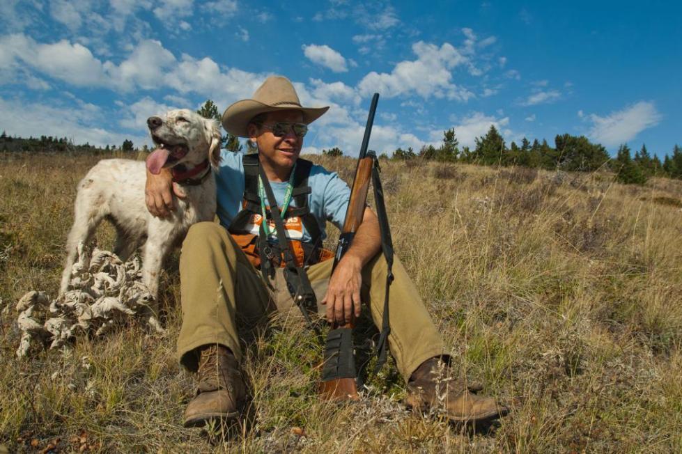 Дрессировка охотничьих собак дратхаар