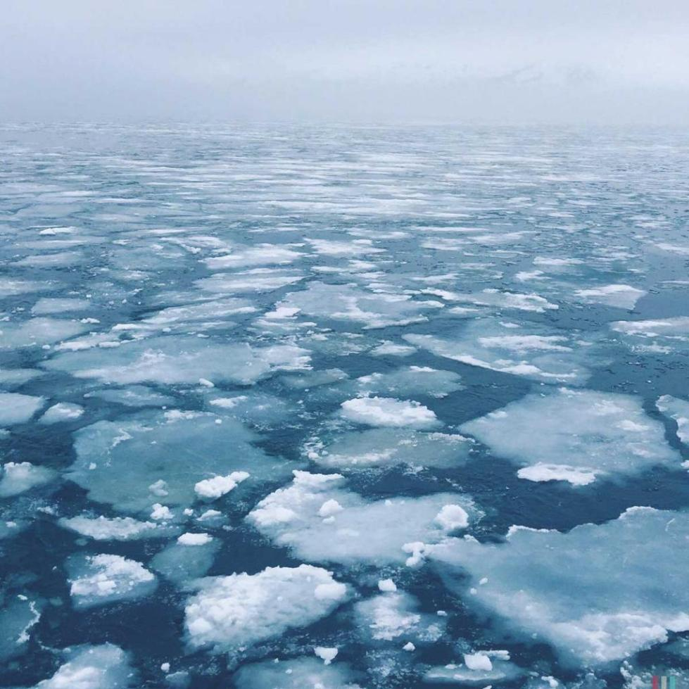 движение льда