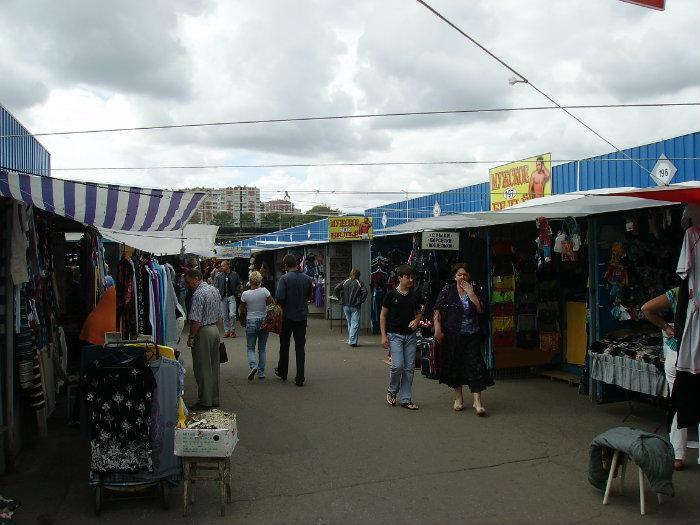 Темерник в Ростове