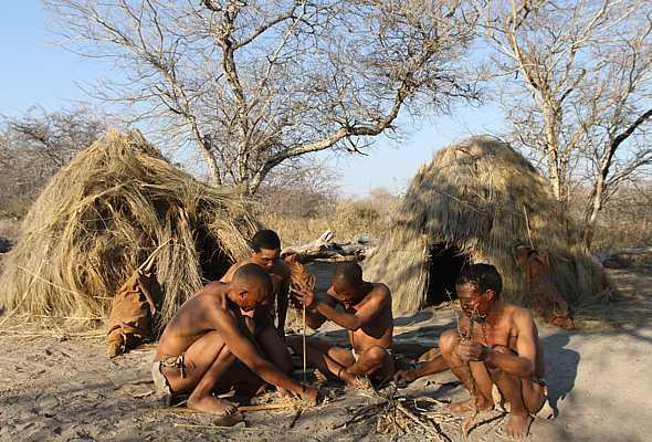 Современные бушмены из пустыни Калахари