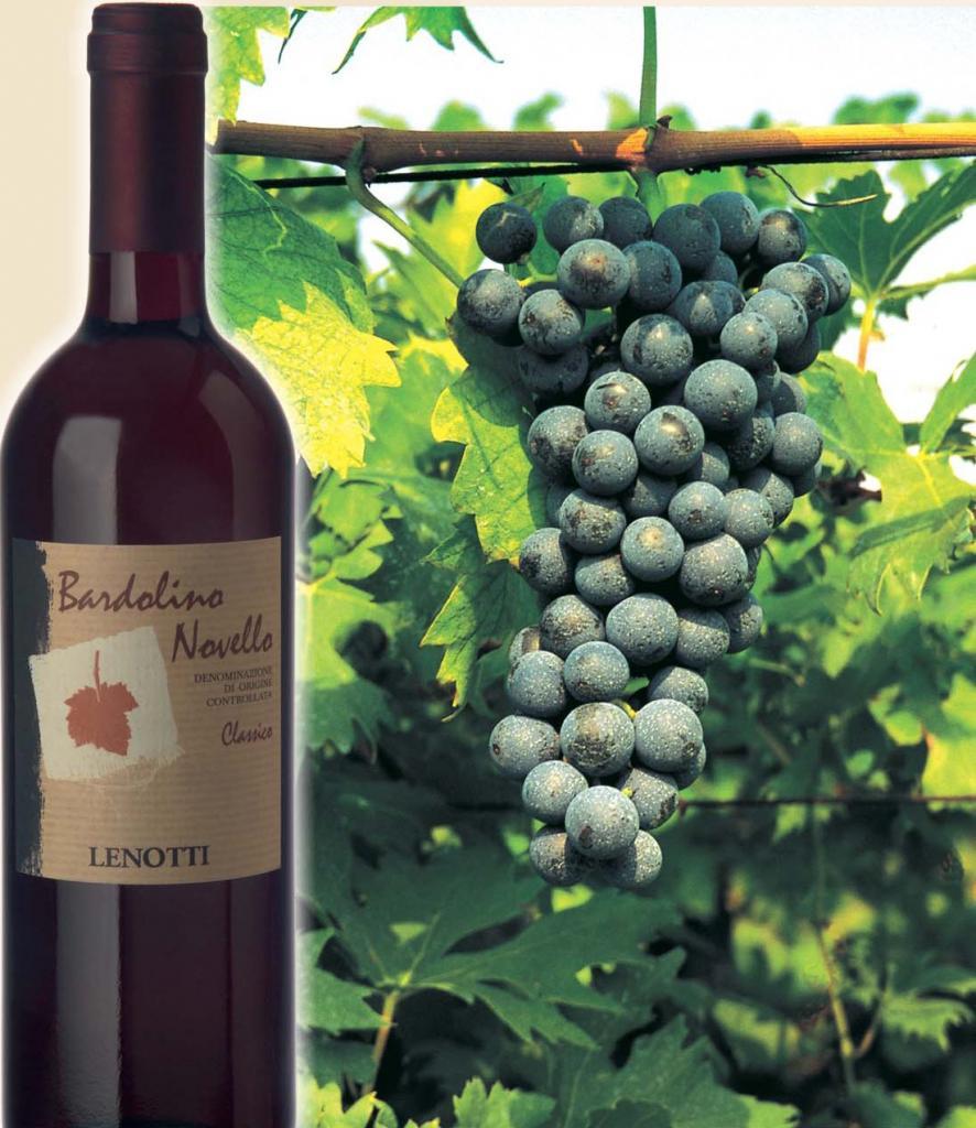 """""""Бардолино"""": вино красное сухое"""