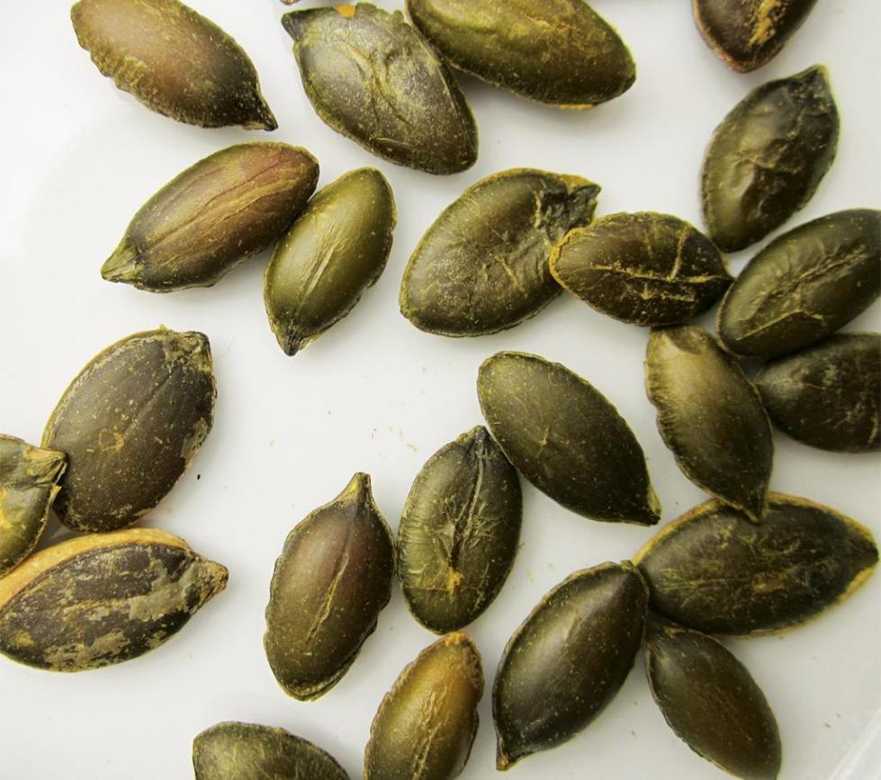 очищенные семена тыквы