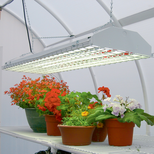 подсветка растений светодиодными лампами
