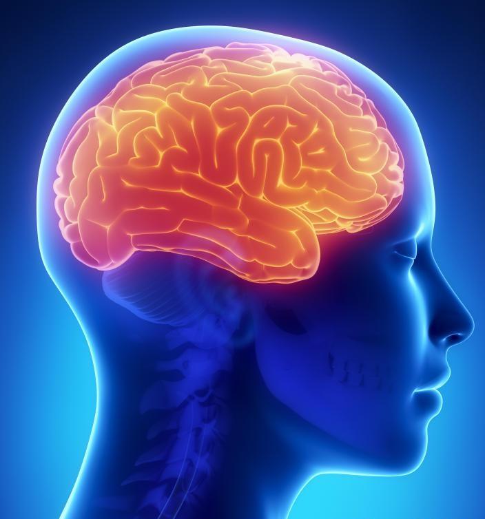 дисциркуляторная гипертоническая энцефалопатия