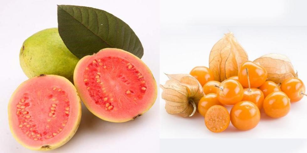 Плоды физалиса и гуавы