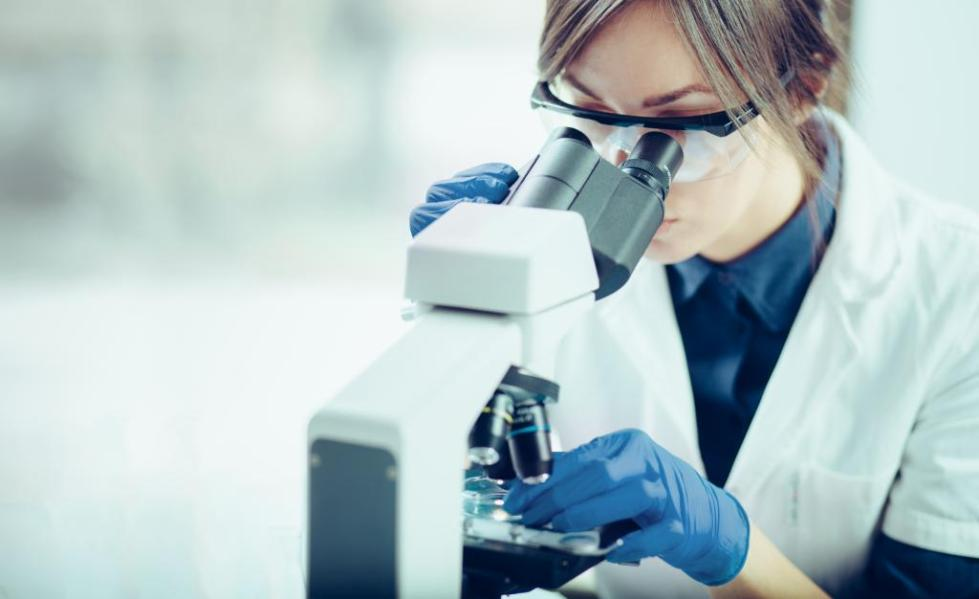 Изучение биоматериала под микроскопом