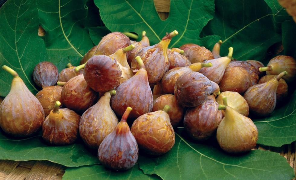 Спелые плоды инжира