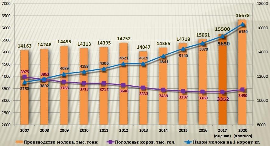 Рост производства молока