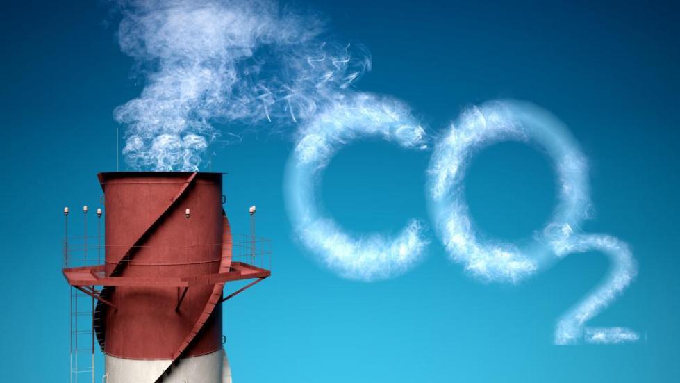 экологические последствия локального загрязнения