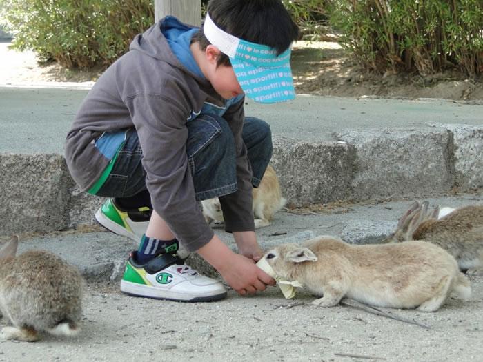 кролики и туристы