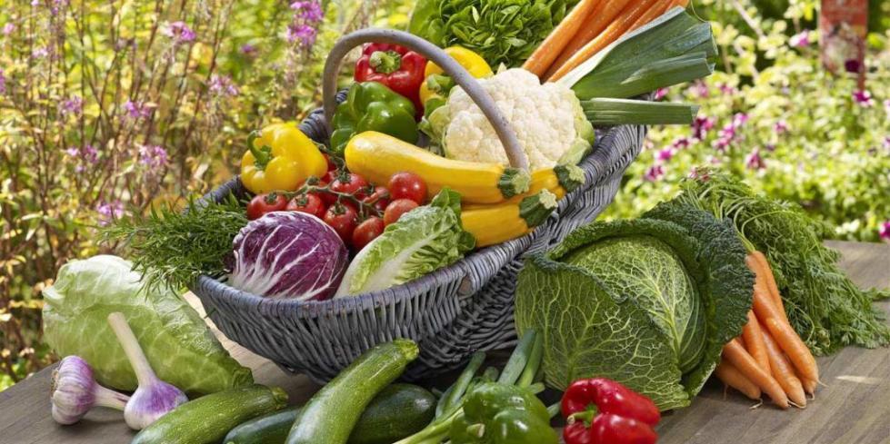 Овощи из родного региона