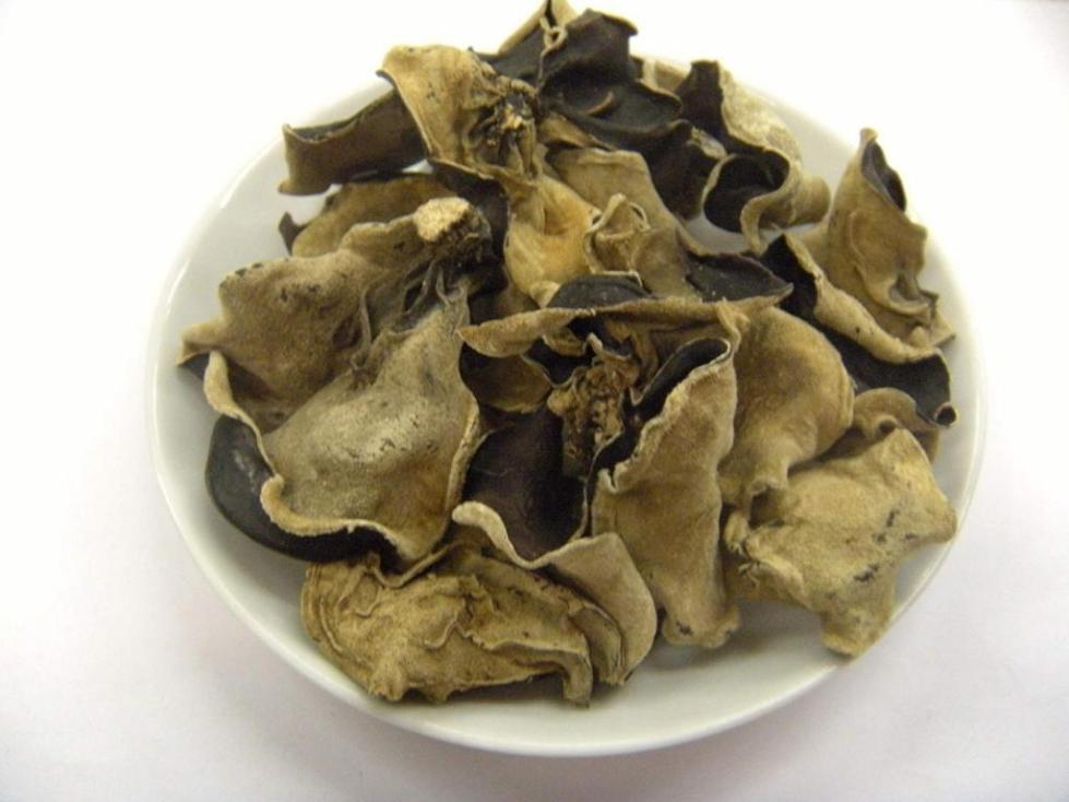 калорийность морских грибов