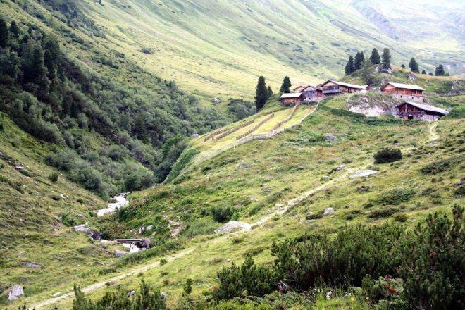 Bergwiesen mit Häusern