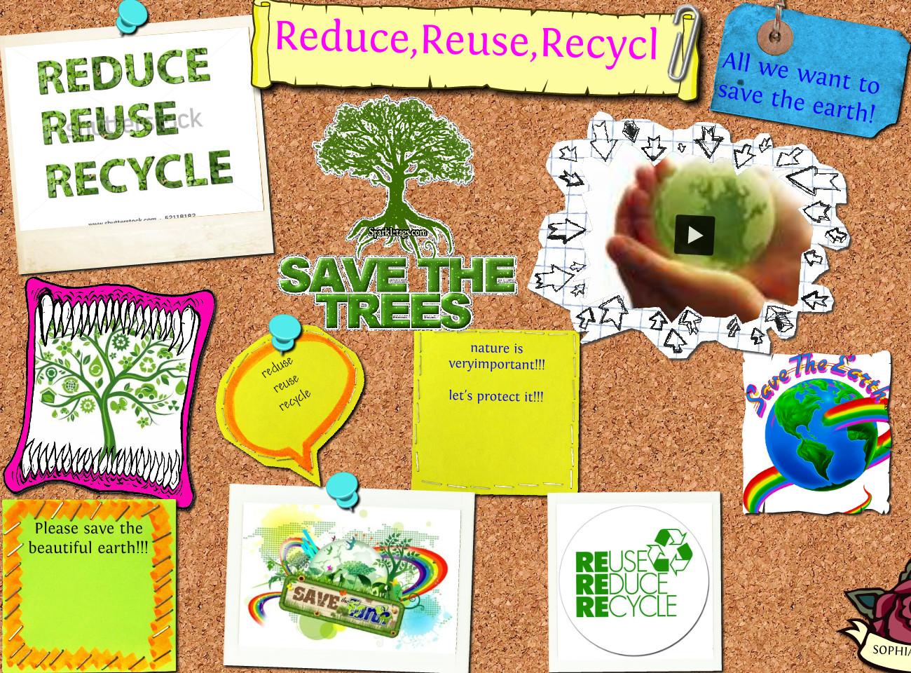 Top 5 Tips To Live Green On Campus