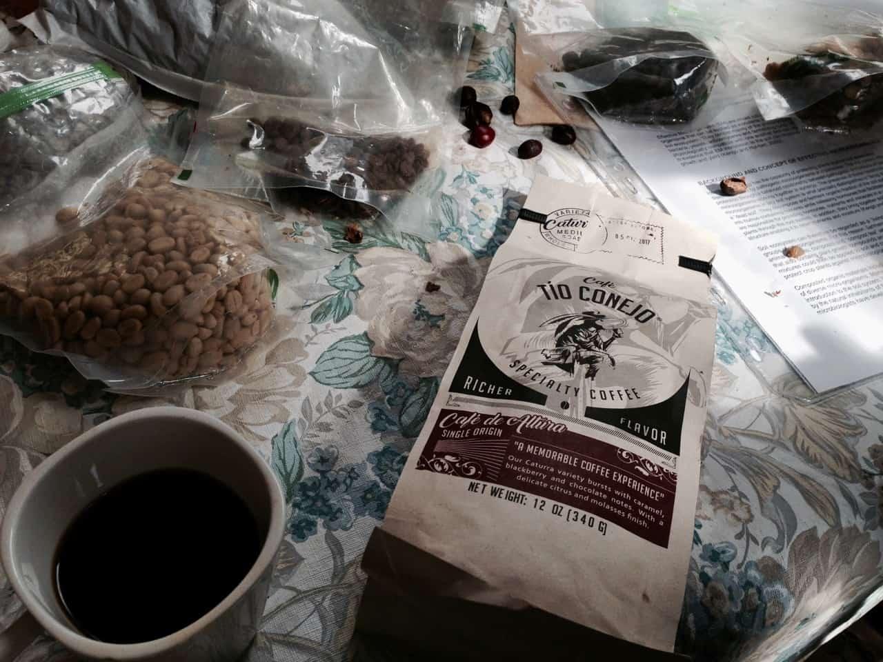 Von verschiedenen Stadien der Frucht bis zum fertigen Kaffee (Bild: M. Schäfer, Textrakt)