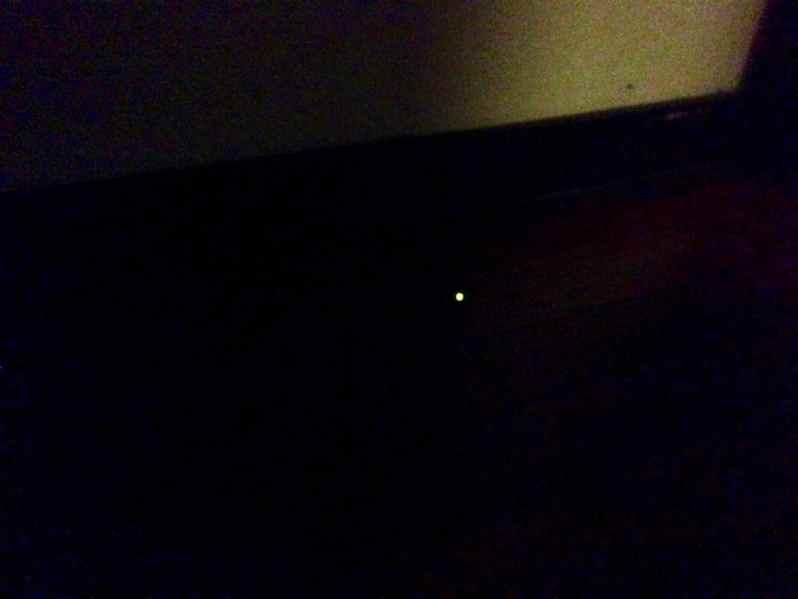 Glühwürmchen (Bild: M. Schäfer, Textrakt)