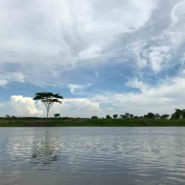 Rio Magdalena bei Mompos (Bild: M. Schäfer, Textrakt)
