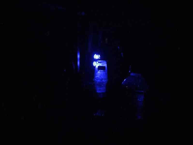 Im Dunkeln (Bild: M. Schäfer)