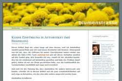 Autohotkey-Einführung bei Michael Sonntag