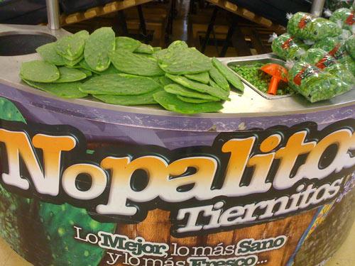 Noplales: Kaktusblätter sind ein schmackhaftes Gemüse
