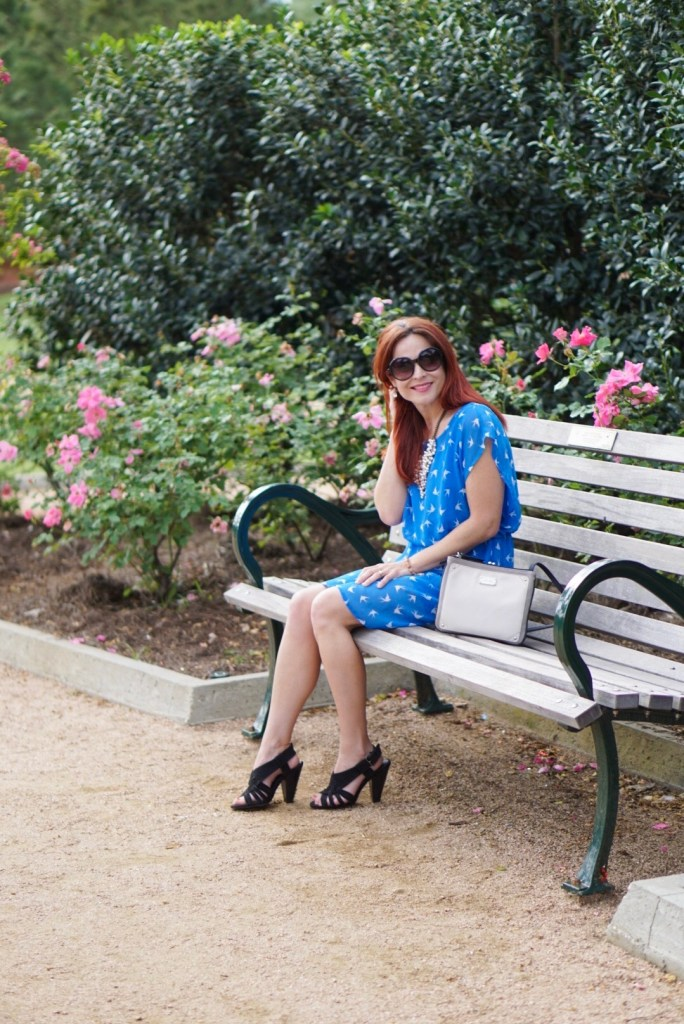 BLUE DRESS, BLACK SANDALS, PARK BENCH, MCGOVERN CENTENNIAL GARDENS, NINEWEST BAG