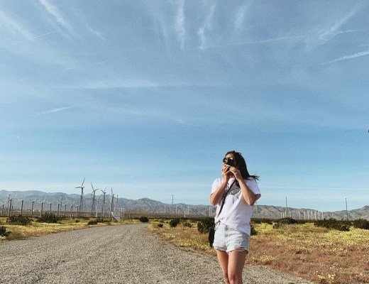palm spring, windmill farm, photography, denim shorts, wedges