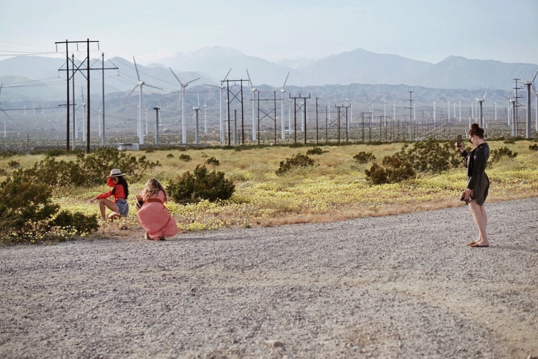 windmill farm, where to visit in Palm Springs, places to travel