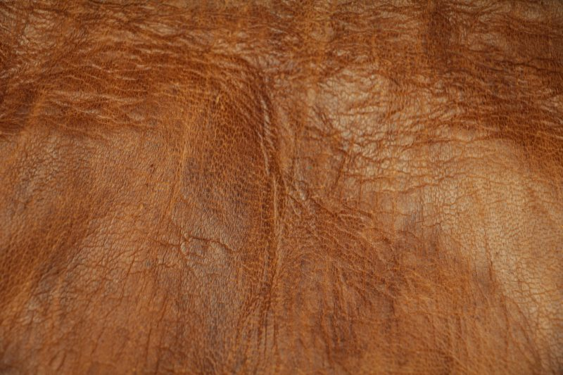 Animal Wallpaper Full Hd Leather Textures Archives Texture X