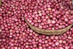 मध्य प्रदेश: शिवराज सरकार किसानों से खरीदेगी प्याज