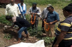 मुस्लिम युवकों ने किया गाय का अंतिम संस्कार