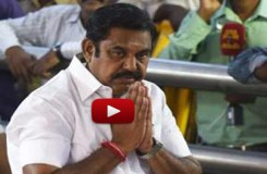 तमिलनाडु: पलनिसामी ने साबित किया बहुमत