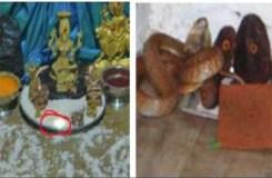 बेंगलुरु : मंदिर में दिख रही नागमणि का सच जानिये !