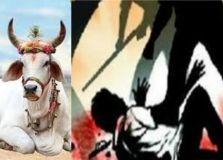 गौरक्षा के नाम पर भीड़ ने दो मुस्लिम युवकों को पीट-पीट कर मार डाला, इलाके में तनाव