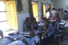 पेड़ से टकराई स्कूली बस, 10 से अधिक बच्चे घायल
