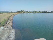 डिंडौरी: तालाब में पानी ही पानी पर किसानों के खेत सूखे