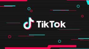 TikTok वीडियो बनाने पर पति मना करता तो पत्नी करती मारपीट