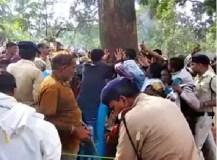 मध्य प्रदेश: वॉट्सऐप पर वायरल हुआ 'चमत्कारी' महुआ पेड़, टाइगर रिजर्व में लगा मेला