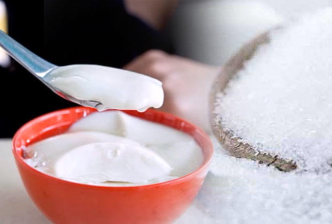 Why it is important to eat healthy body, know the amazing benefits of yogurt