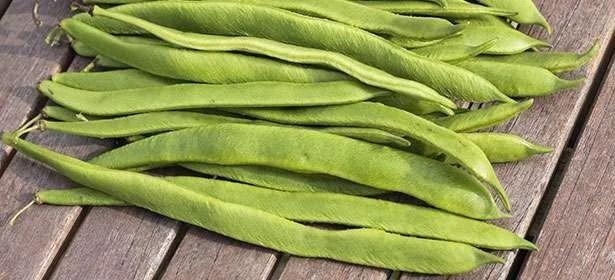 beans-khane-ke-fayde-aur-nuksaan-2