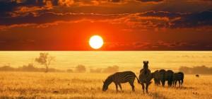 Экотуризм в Африке