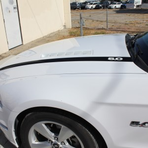 Hood Stripes fits 2014-2015 Ford Mustang – Many Colors and Logos