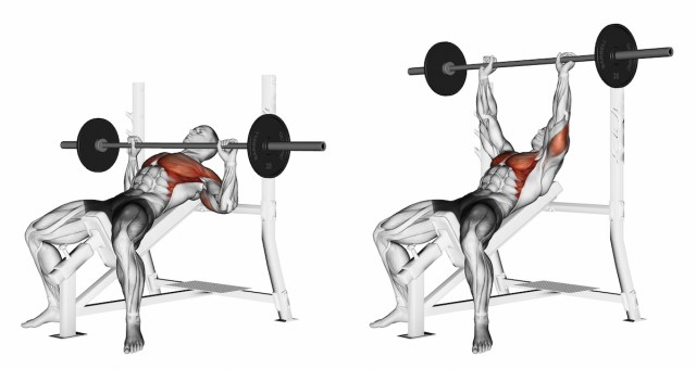 Vertical bench press