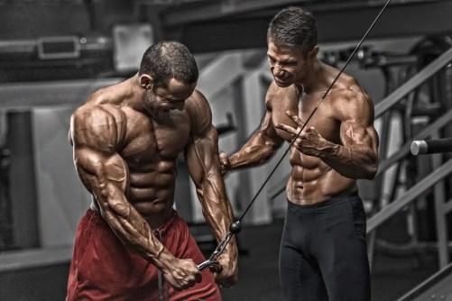bigger stronger muscles