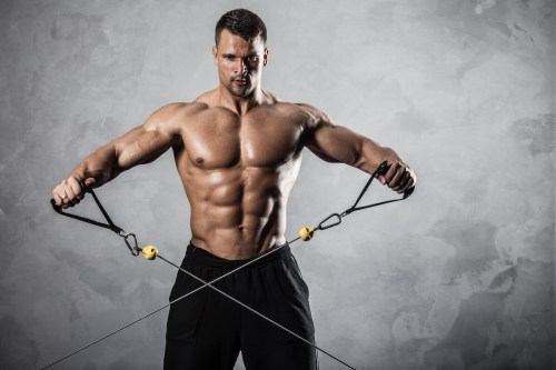 top 5 gym equipment to build muscles